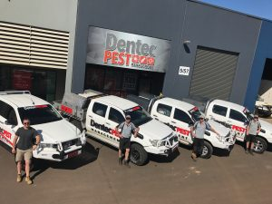 Dentec Office with Utes