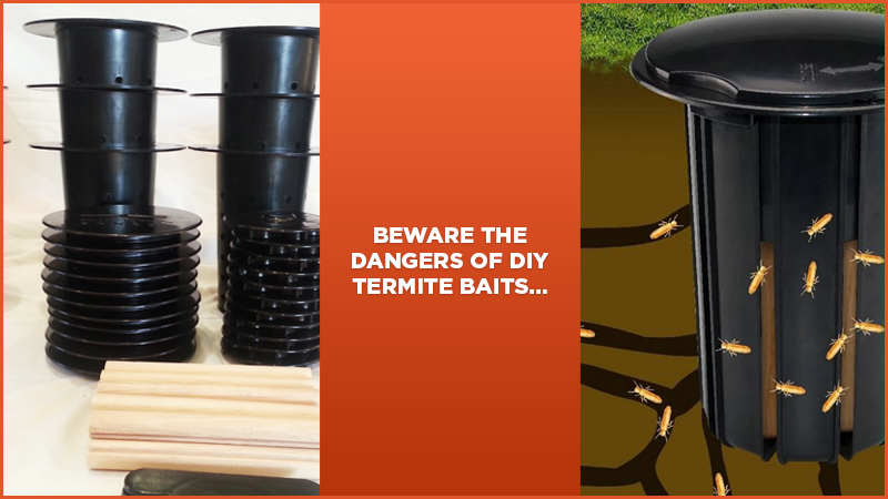 Beware The Dangers Of Do It Yourself Termite Baits